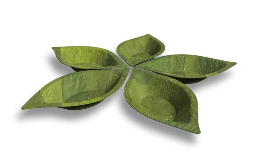 leaf-bowls-by-Leaf-Republic-1-889x528