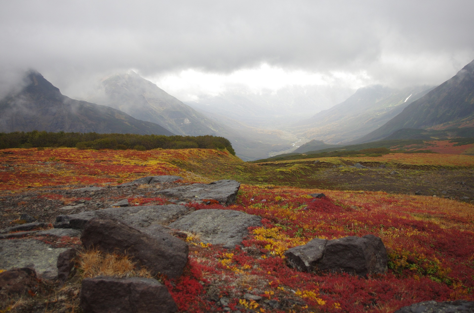 mountain-tundra-2761663_1920