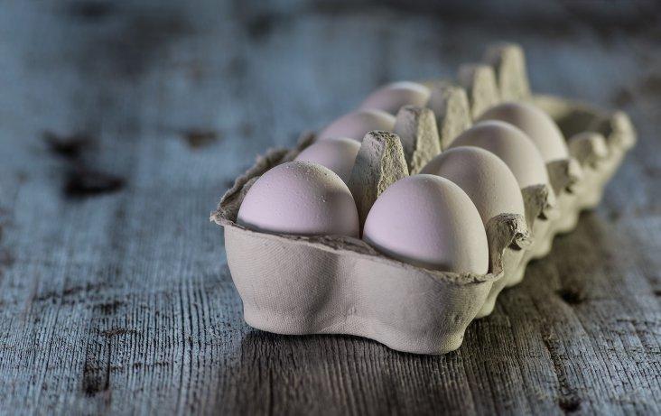 eggs-3183410_1920