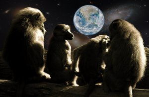 planet-of-the-apes-679911_1920
