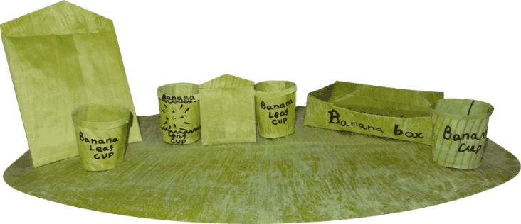 Bananaleaf-Technology-products-889x384
