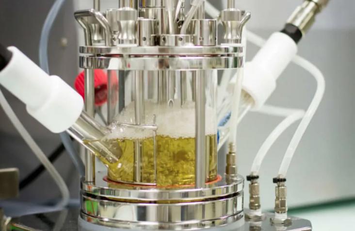 biorecycling