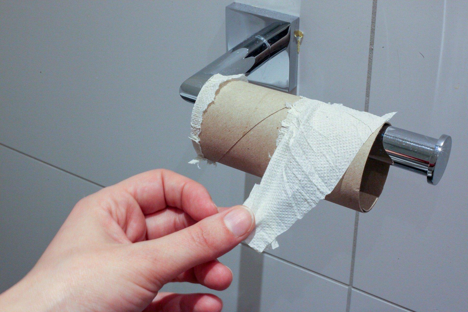 toilet-paper-4941765_1920