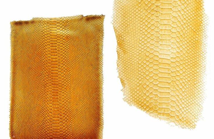 tomtex-biomaterial-uyen-tran_dezeen_2364_col_1-852x551