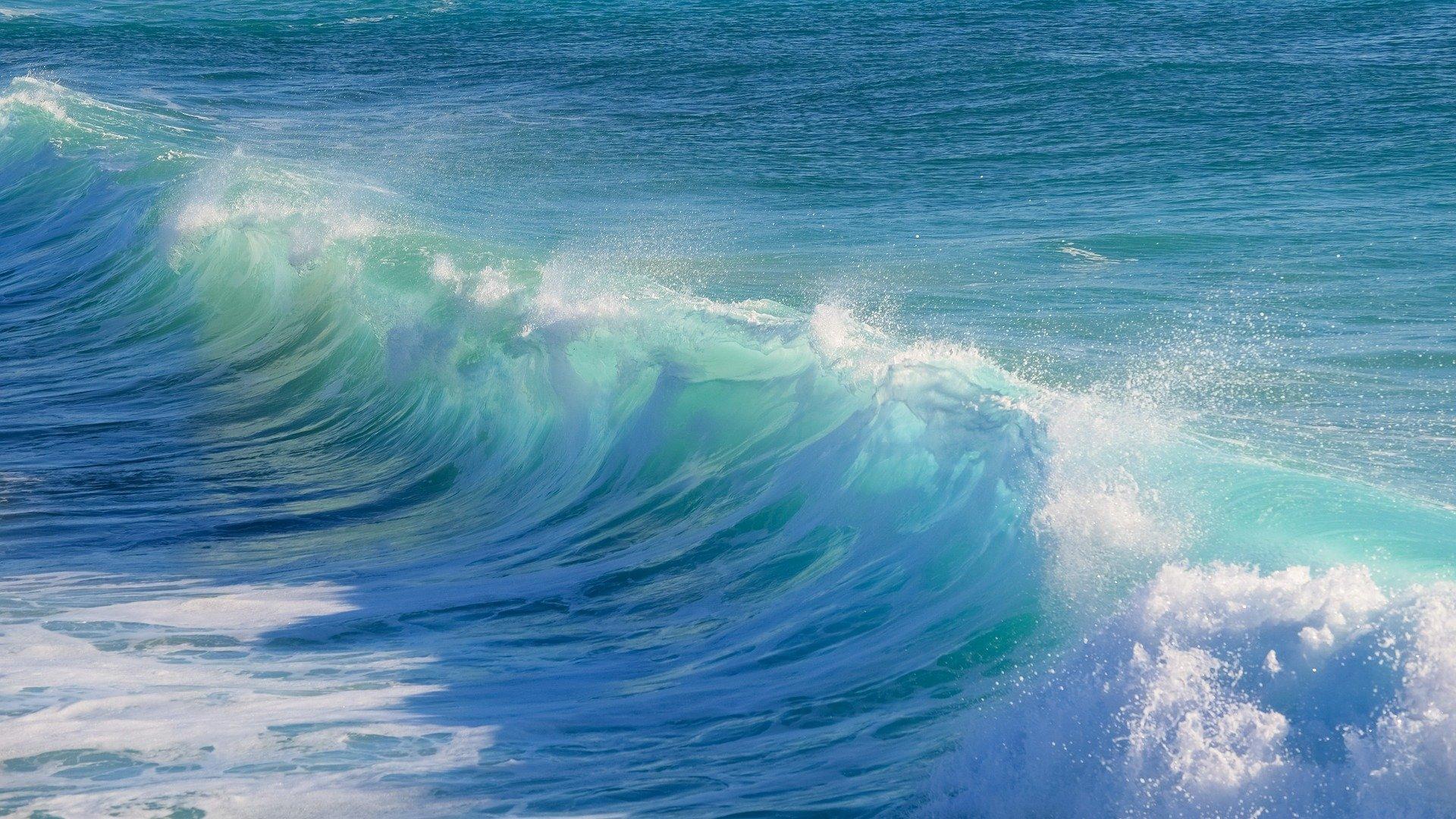 surf-3104869_1920