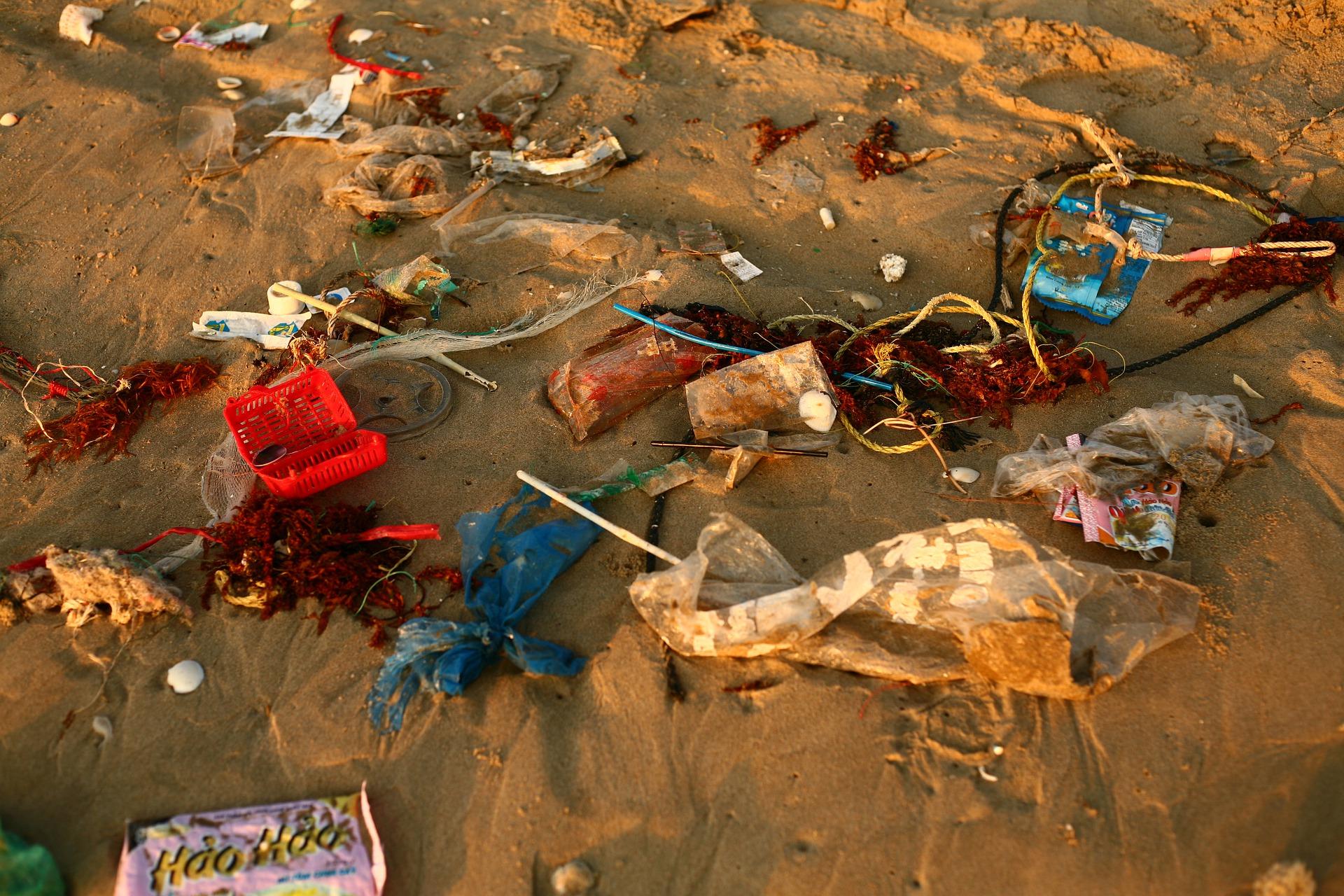 trash-4897353_1920