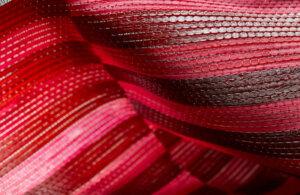 7a-lamina-rosa-1-1030x687