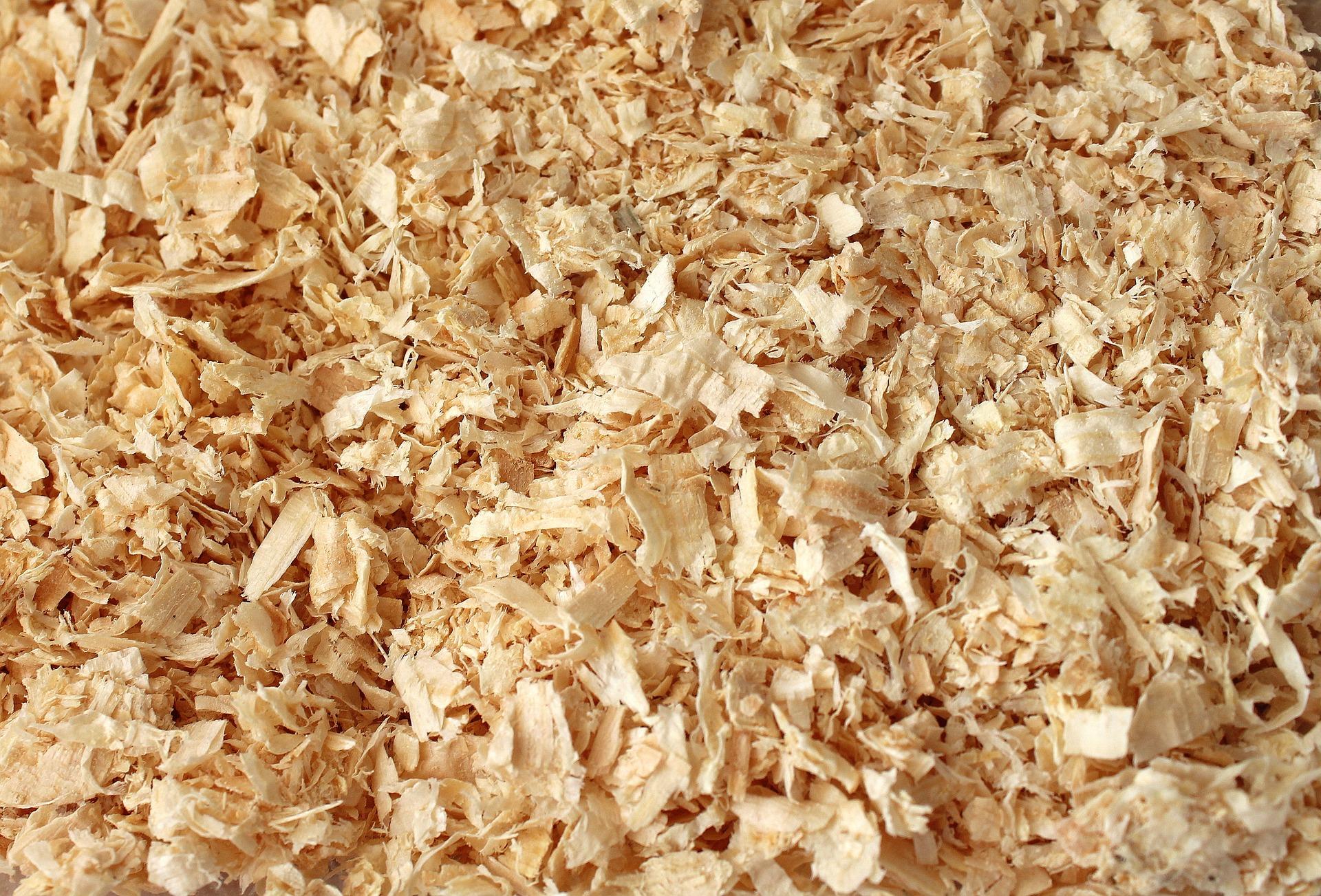 sawdust-3170434_1920